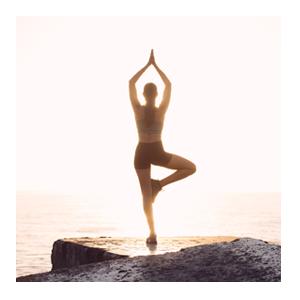 Yoga Vielfalt erleben